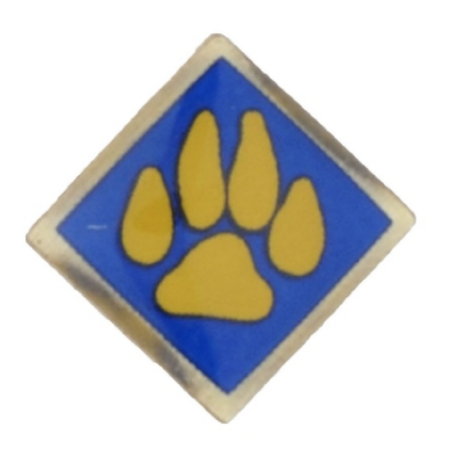 Recalled Cub Scout outdoor activity pin