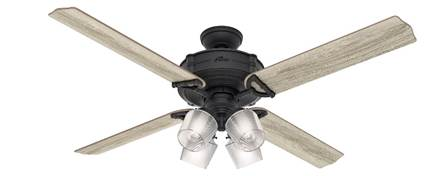"Hunter fan 54179 Brunswick 60"" with 4 lights in black (natural iron) housing"
